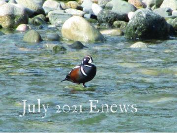 July enews