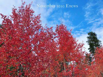 Rendevous fall aspen 2018
