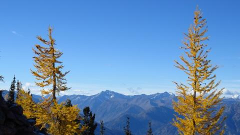 Fall in the North Cascades