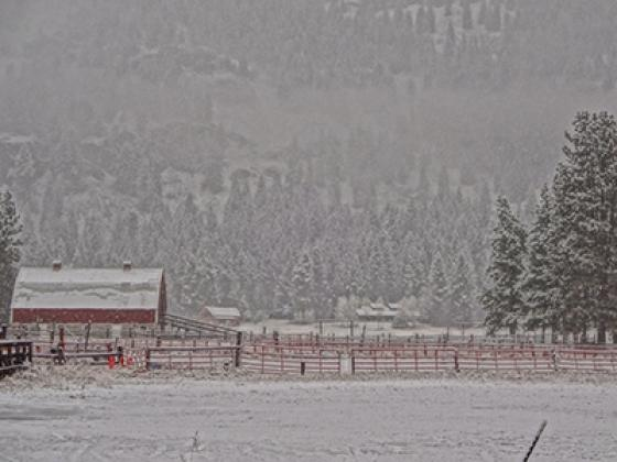 Mazama barn in snow JP