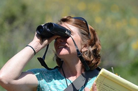 Heide binoculars
