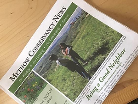 Printed newsletter summer 2019