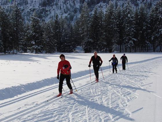 Xc ski MK