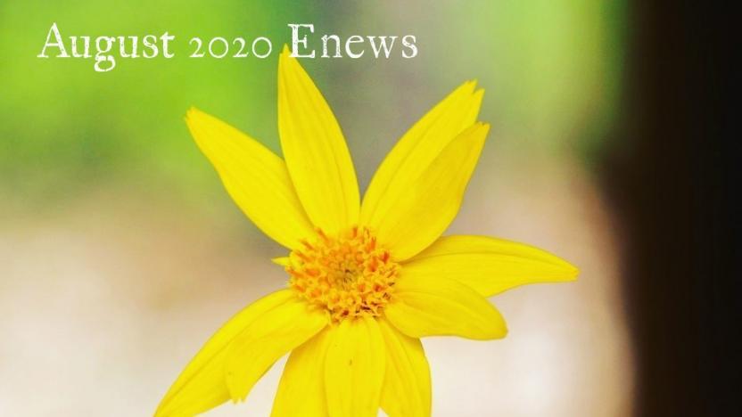 August 2020 Enews