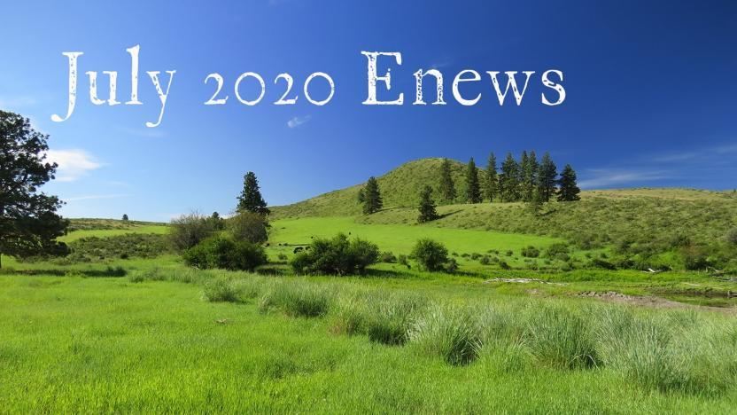 July 2020 Enews