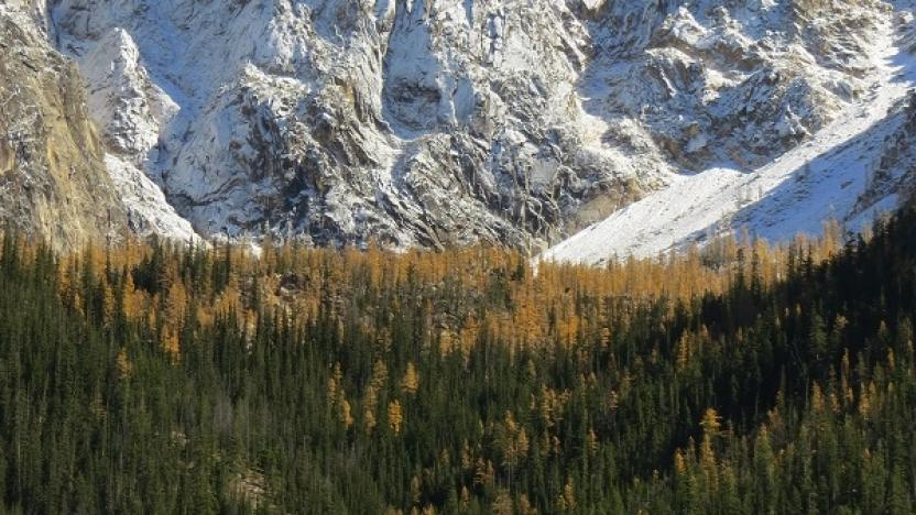 Early Winters Spires Natural History