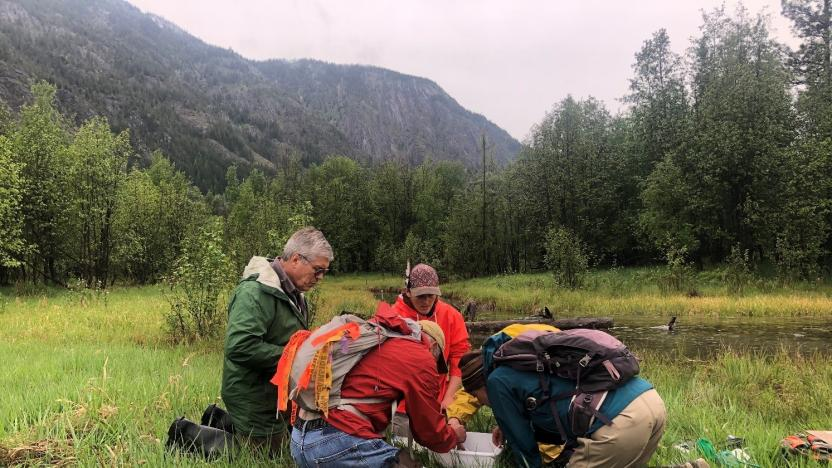 Citizen Science Opportunity:  Hancock Springs Monitoring