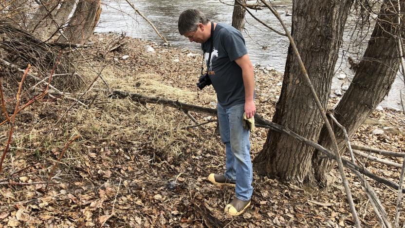 Volunteer at Homestream Park:  Floodplain Restoration (Day 2)
