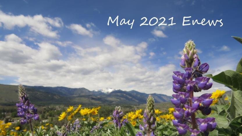 May 2021 Enews