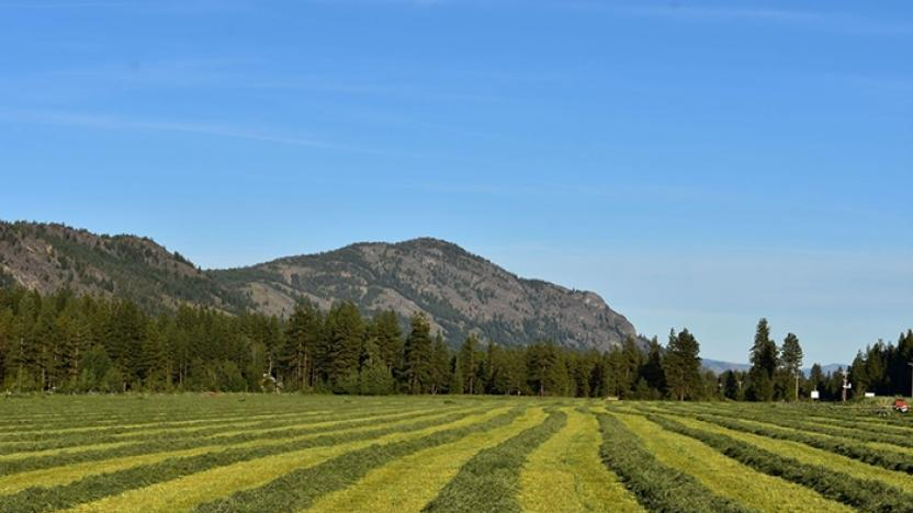 Ties to the Land: Succession Planning for Family Farms, Ranches and Working Forests