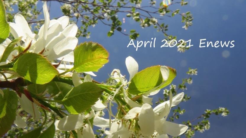 April 2021 Enews