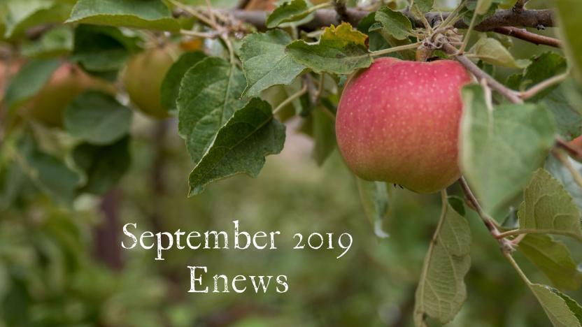 September 2019 Enews