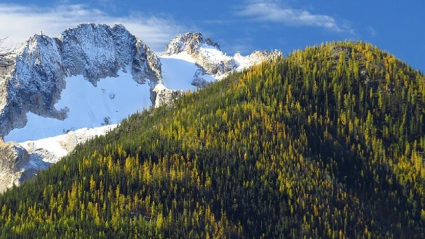Land of the Larch Alpine Hike